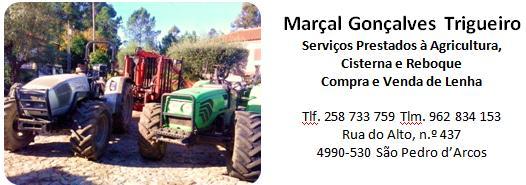 Marçal Gonçalves Trigueiro